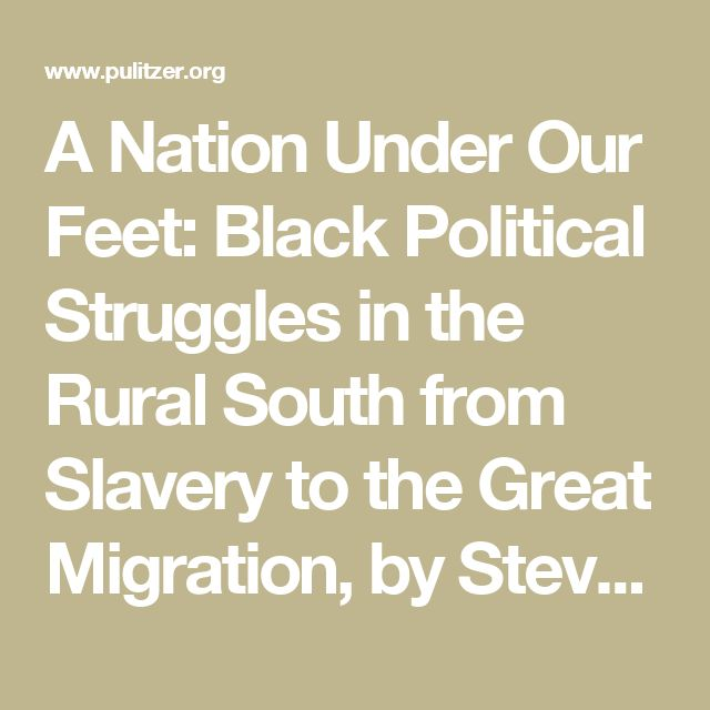 A Nation Under Our Feet: Black Political Struggles in the Rural South from Slavery to the Great Migration, by Steven Hahn
