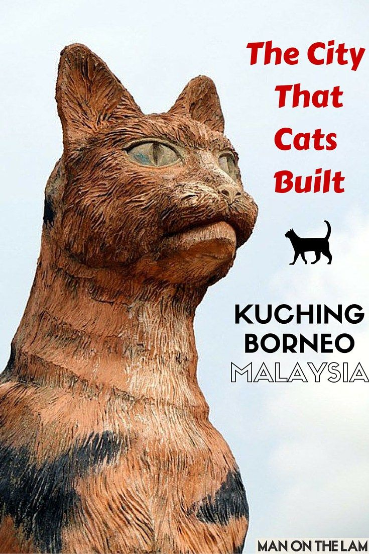 The City That Cats Built -- Kuching, Borneo, Malaysia #cats #oddities #malaysia http://manonthelam.com/cat-city-kuching-sarawak-borneo-malaysia/