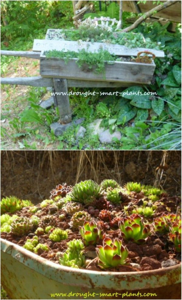 M s de 25 ideas fant sticas sobre carretilla de jard n en for Carretillas para jardin