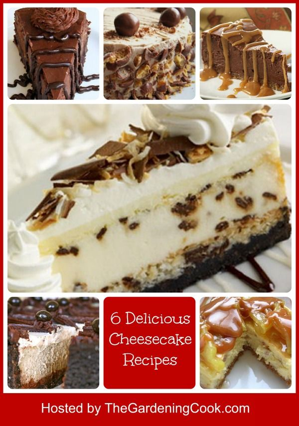 Round up of 6 Delicious Cheesecake Recipes