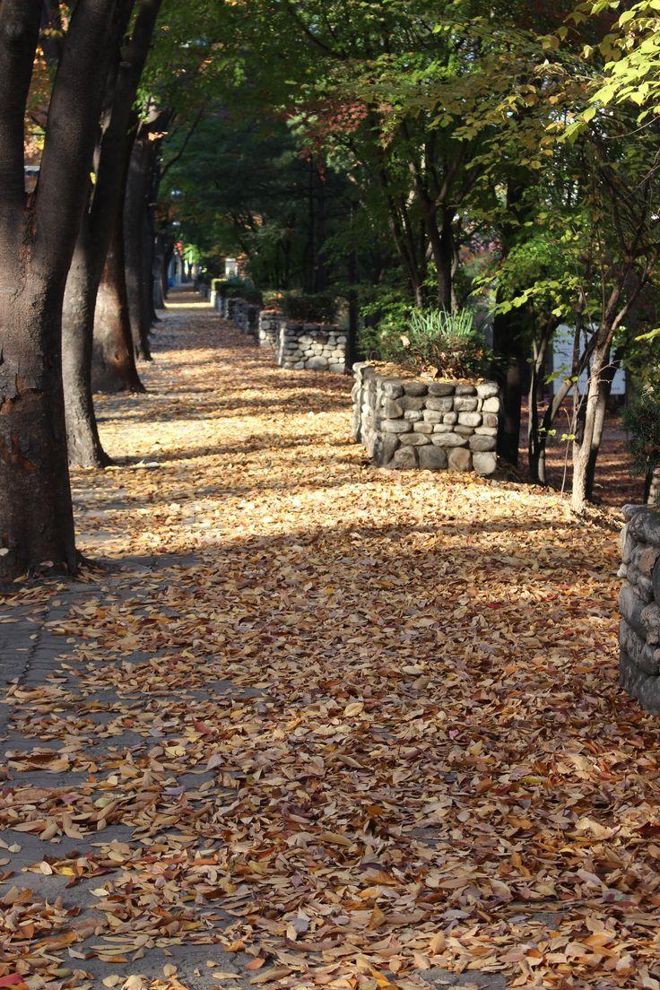 Autumn 2014 #8