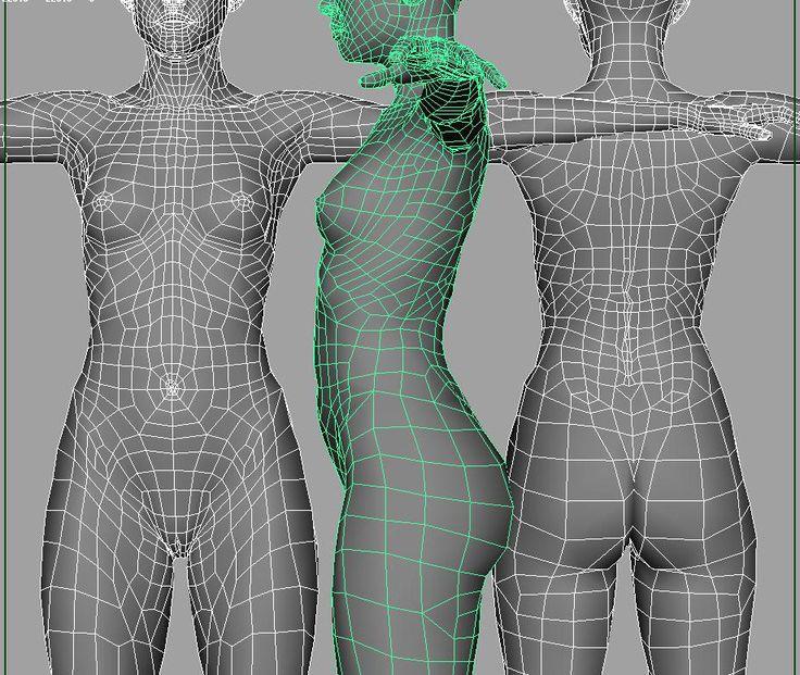 female body topology - חיפוש ב-Google