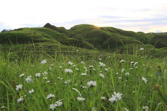 Sleping hill wairinding