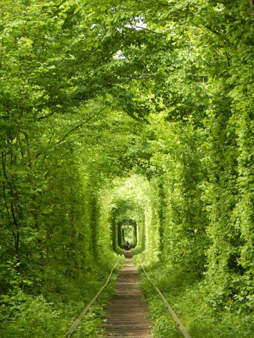 Over hele verden drages turister af spøgelsestomme og mystiske steder.