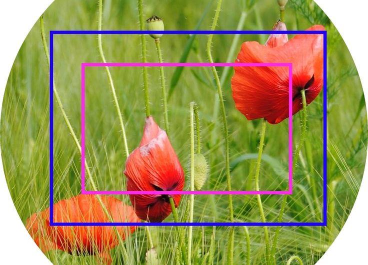 Vergleich des Bildkreises mit Vollformatsensor und mit Crop-Faktor. Um den Crop-Faktor auszugleichen können Objektive verwendet werden. Hiermit kann der Bildausschnitt reguliert werden! #Cropfaktor #objektiv weitere Infos zum Crop-Faktor findet ihr hier: http://www.fotos-fuers-leben.ch/fototechnik/objektiv/crop-faktor-bei-dslr-kameras/