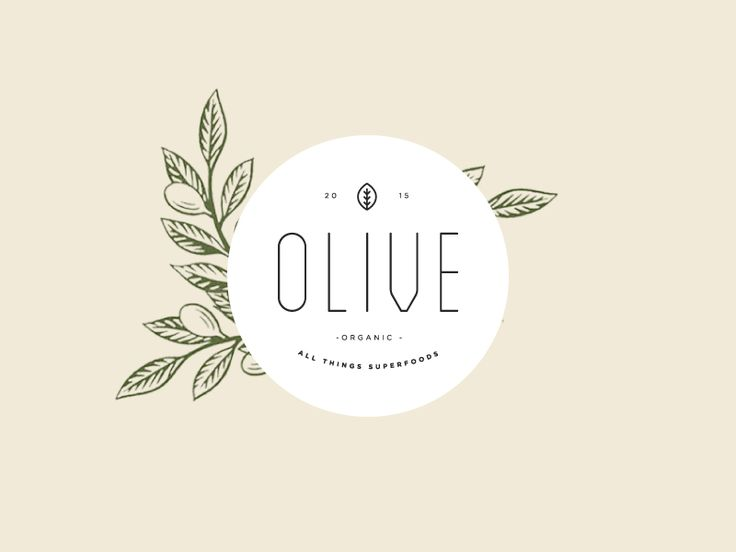 Olive / Brand Concept