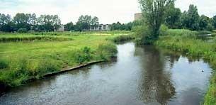 De rivier de Dommel,Noord-Brabant