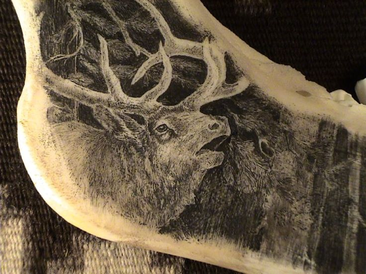 Scrimshaw | Here are some examples of Scrimshaw Engraving shared by our Network of ...