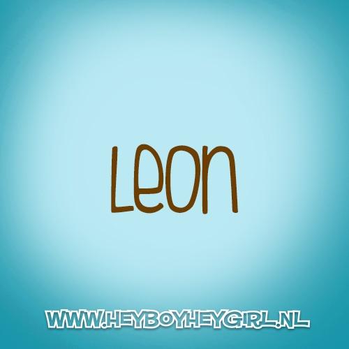 Leon (Voor meer inspiratie, en unieke geboortekaartjes kijk op www.heyboyheygirl.nl)