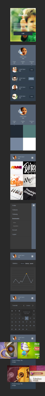 Designer Portfolio App UI Kit | GraphicBurger