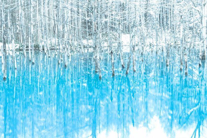 """死ぬまでに一度は見たい!思わず感動する日本国内の""""神秘的な池""""5選   RETRIP"""