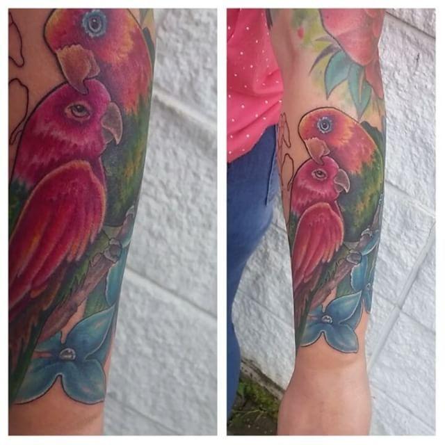 Made these cute love birds on the sweet @amie80 today ♡ #tattoo #tattooartist #tattoogirls #tattoolife #tattoodreams #jendanger #urge2studios #sourcetattoosupply #deathsheadneedles #solabs #hustlebutter #ink #inked #colortattoo #lovebirds #birdtattoo #like #love #edmonton #edmontonink #edmontonartist #edmontontattoo #canadatattoo #canadaartist #yeg #yegart #madeinyeg