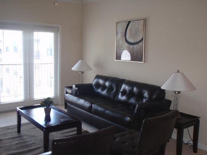 Medical Centre Houston Furnished Corporate Apartment By Stafford Housing !