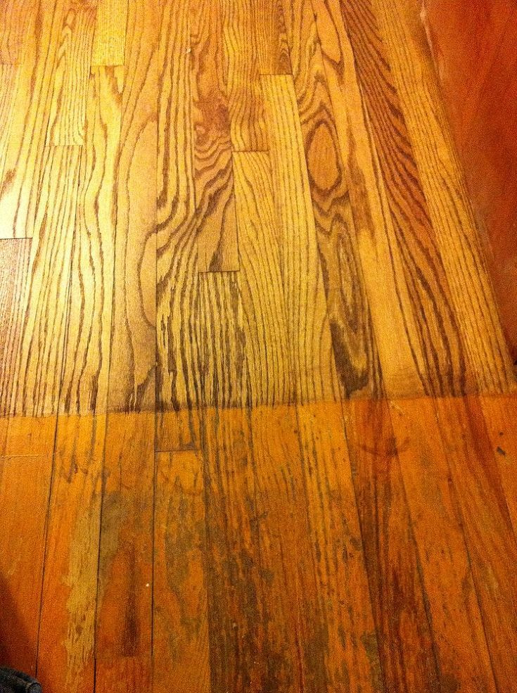 63 best mr sandless images on pinterest floors wood flooring spent 650 dollars for mr sandless a floor refinishing company to sand down my floor flooring the floor on the bottom is before the top is after with just solutioingenieria Image collections