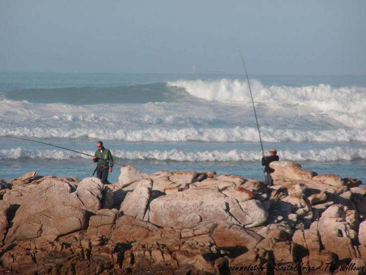 Fishing at The Willows. Activities at The Willows Resort.  Port Elizabeth Accommodation.