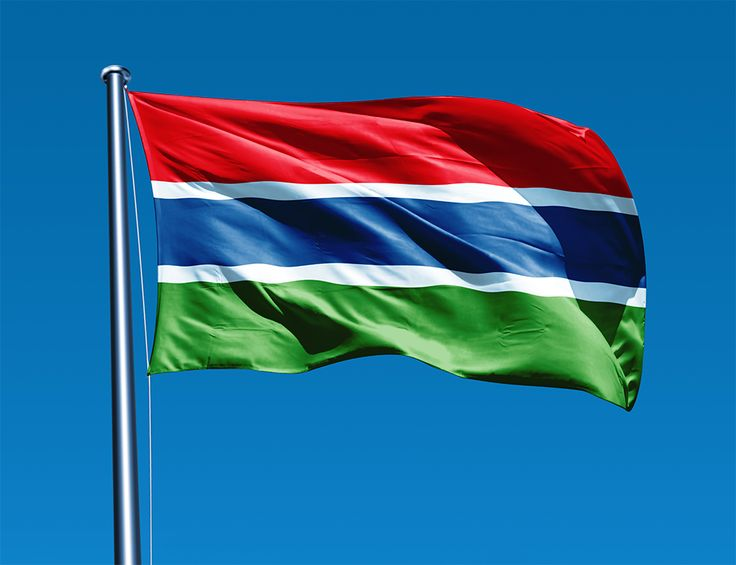 The Gambia flag | Gambia Flag -