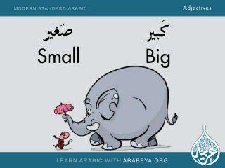 Adjectives in Modern Standard Arabic -