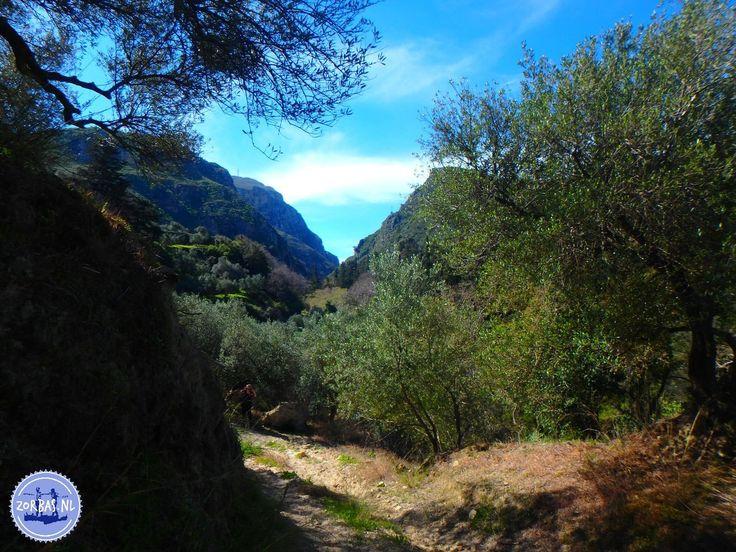 Topolia kloof wandelen op kreta Griekenland:wandelen in de kloof in de buurt van Kissamos op Kreta.     Laatste update: 26 maart 2017:Topolia kloof wandelen op kreta Griekenland - Topolia Kreta - topolia kloof     E4 wandelpad op Kreta: Meerdaagse wandelingen op Kreta. We bieden een combinatie aan van verschillende wandelingen op Kreta over de E4