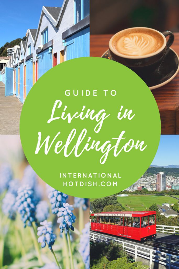 Guide to Living in Wellington