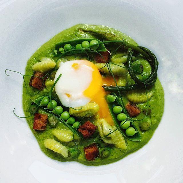 Sweet corn & fava bean gnocchetti with mint pea chard puree, sugar snaps, asparagus, garlic scapes…