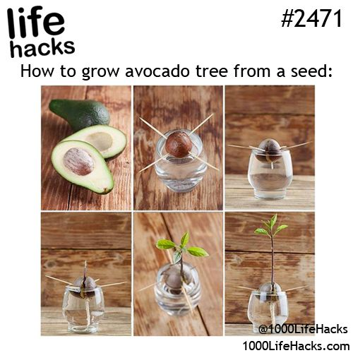 17 best images about life hacks on pinterest airplane Cool household hacks