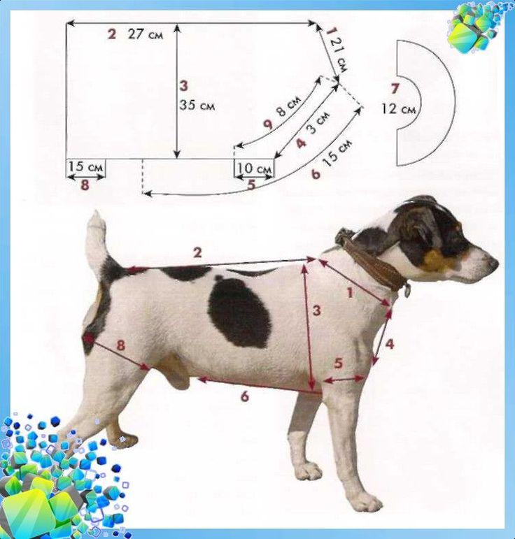 Шьем одежду для собак в контакте