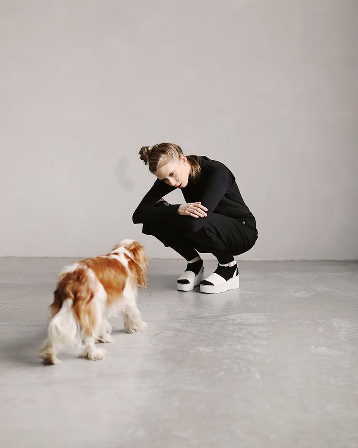 #bts chilling with my homedog collin at the @_foodstories_ studio the other week. ( new video about life changing new years resolutions on youtube and the blog ! )