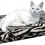 HD Catbed Zebra - 45x55cm  HD Cated Zebra  HD Orthopedisch Kattenbed. (HD=Heupdysplasie)  Last van gewrichten of spieren?  Of juist om deze problemen te voorkomen? Dan is dit het juiste bed voor de kat. Dit orthopedische kattenbed is bijzonder geschikt voor katten met gewrichtsproblemen artrose of ouderdomsverschijnselen.Bovendien heeft het bed een preventieve werking om deze problemen te voorkomen. HD en ED zijn problemen die veel voorkomen. Bovenop de normale schuimrubberen vulling zijn…