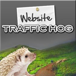 Not only do they deliver great quality traffic but you will earn Guaranteed Views and Safelist Mailings just by surfing! This gives you the triple play on advertising!