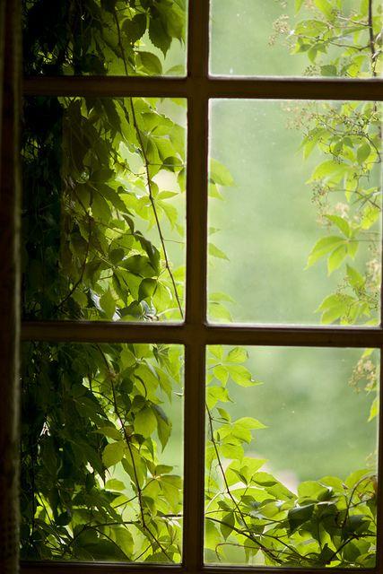 in the kingdom of the broken hearts by nicolasv, via Flickr