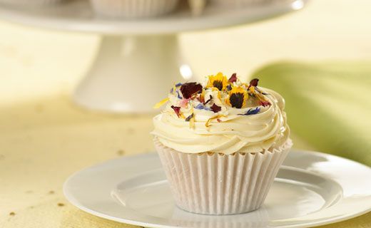 Lemon Cupcakes with Quick Creamy Icing.