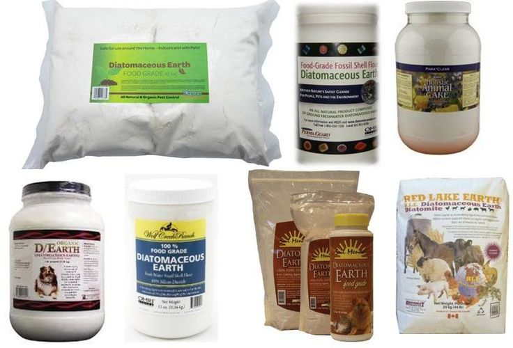 Ottawa Valley Dog Whisperer : DIY Natural, Herbal Flea, Tick, Mosquito Repellent Sprays, Rubs, Dips, Rinse for Dogs and Cats