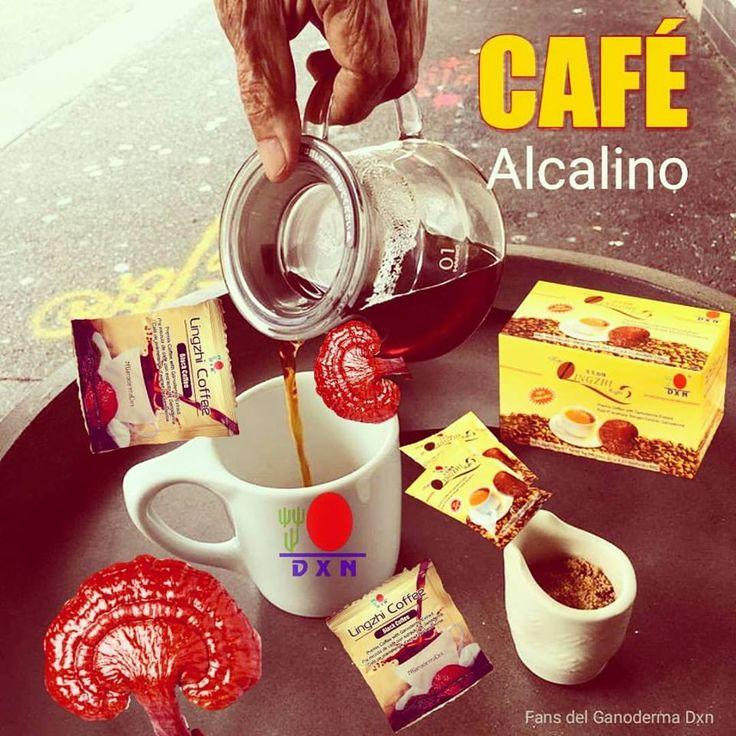 Scopri a questo link http://www.ganoshop.it/categoria-prodotto/bevande/caffe-al-ganoderma/ la selezione di caffè alcalino con ganoderma della DXN