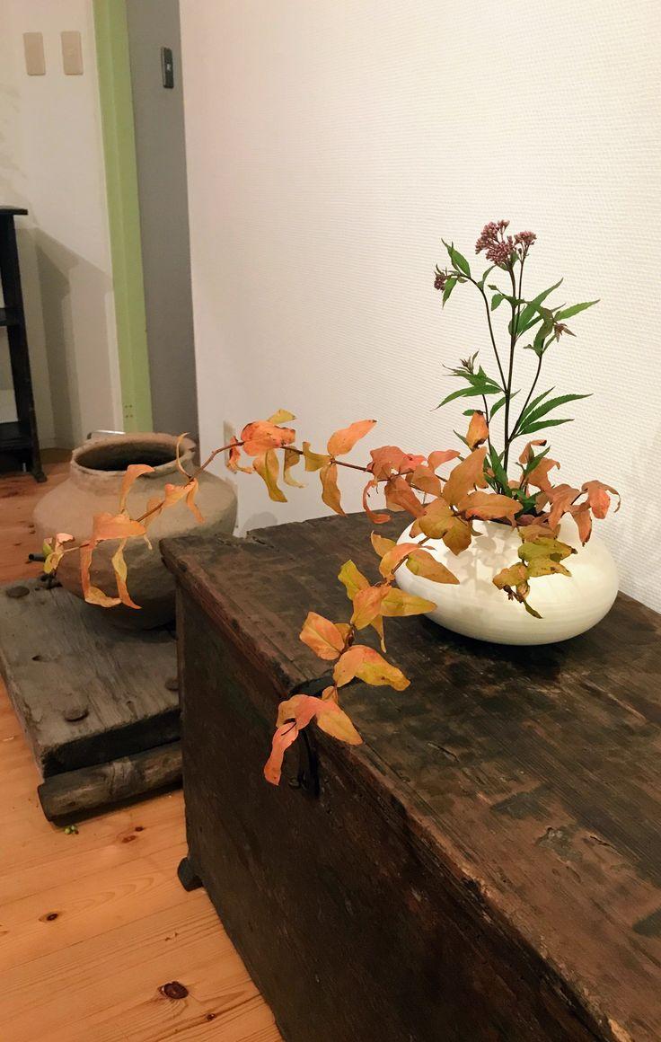 花材 : ヒペリカム、フジバカマ
