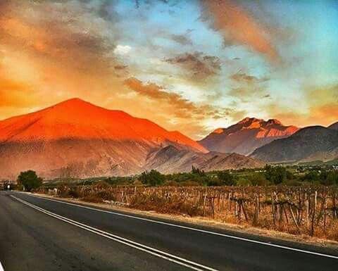 Camino a vicuña ,valle de elqui chile .