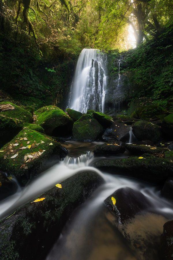 Matai Falls by Dylan Gehlken on 500px... Matai Falls, New Zealand.