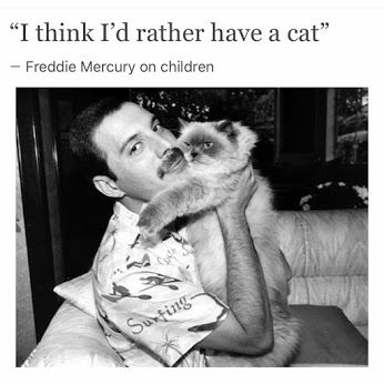 """And two years later, when the romance was rekindled, she asked Freddie to give her a child Freddie responded by making her the sole heir to his massive fortune in his will but told her: ""I'd rather have another cat."" ‪#‎childfree‬ #freddiemercury ✍http://www.queenarchives.com/index.php?title=Freddie_Mercury_-_11-25-1991_-_The_Star_-_AIDS_Kills_The_King_of_Rock"