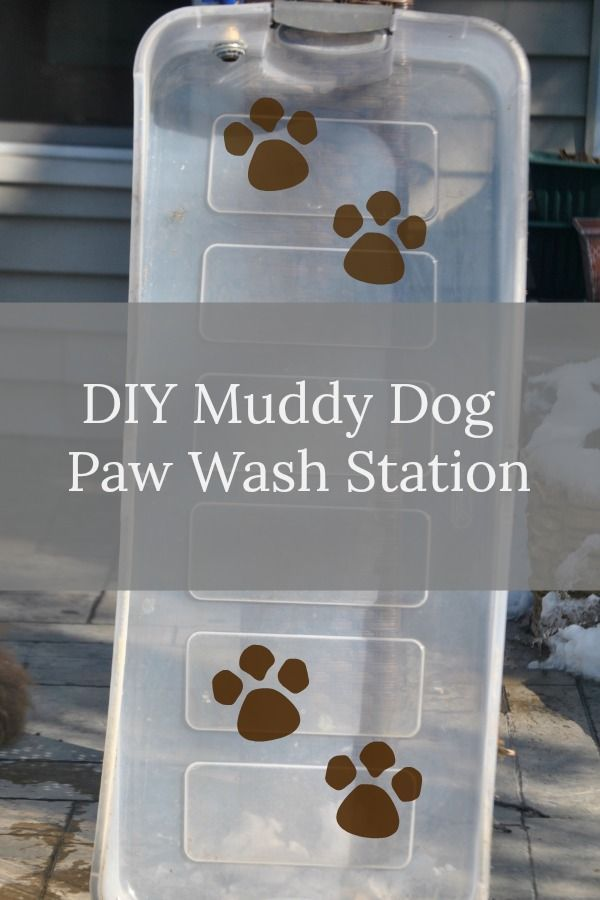 Diy Muddy Dog Paw Wash Station Dog Paws Diy Dog Toys Dog