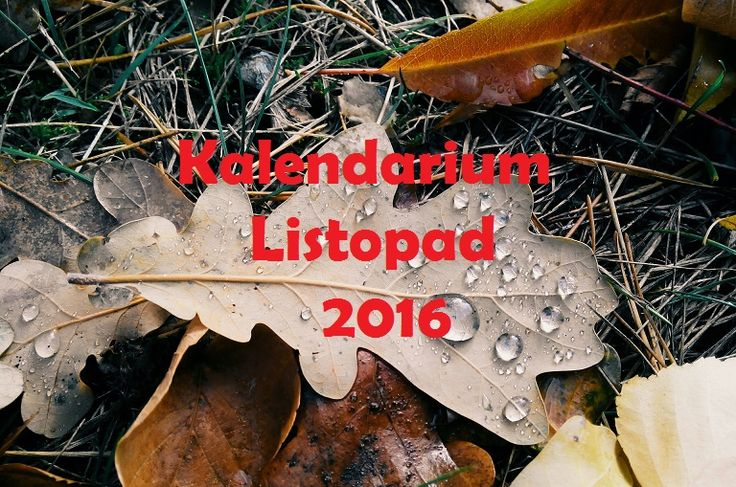 Kalendarium na listopad #spektakl #teatr #koncert #film #wystawa #festiwal #sztuka #muzyka #warszawa #kraków #katowice