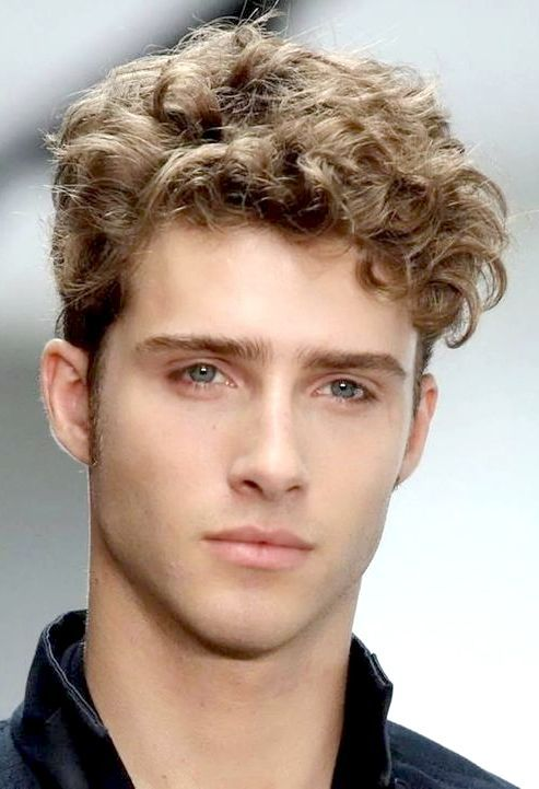 mens haircuts for thick curly hair pin by breid on boy hair thick curly hair 3687 | 215858bd7bc1b30c3aaa3008a4bbab9d