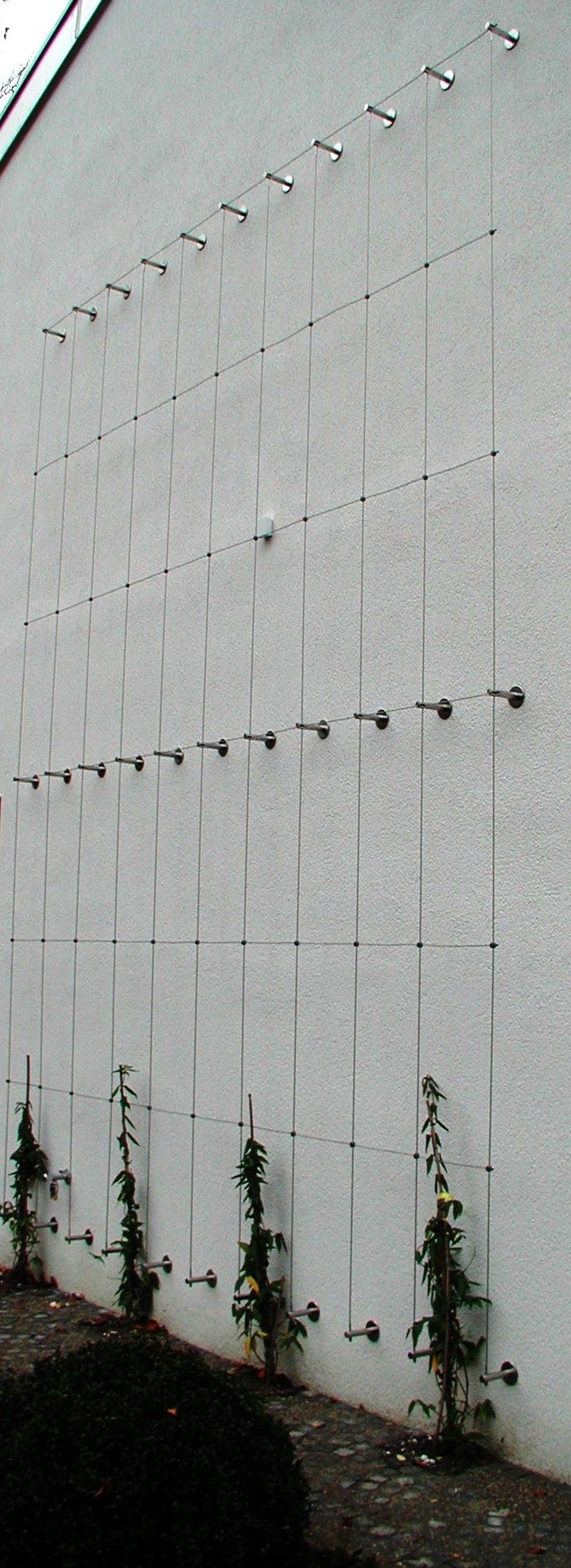 ** Wonderful Inexperienced Wall System....