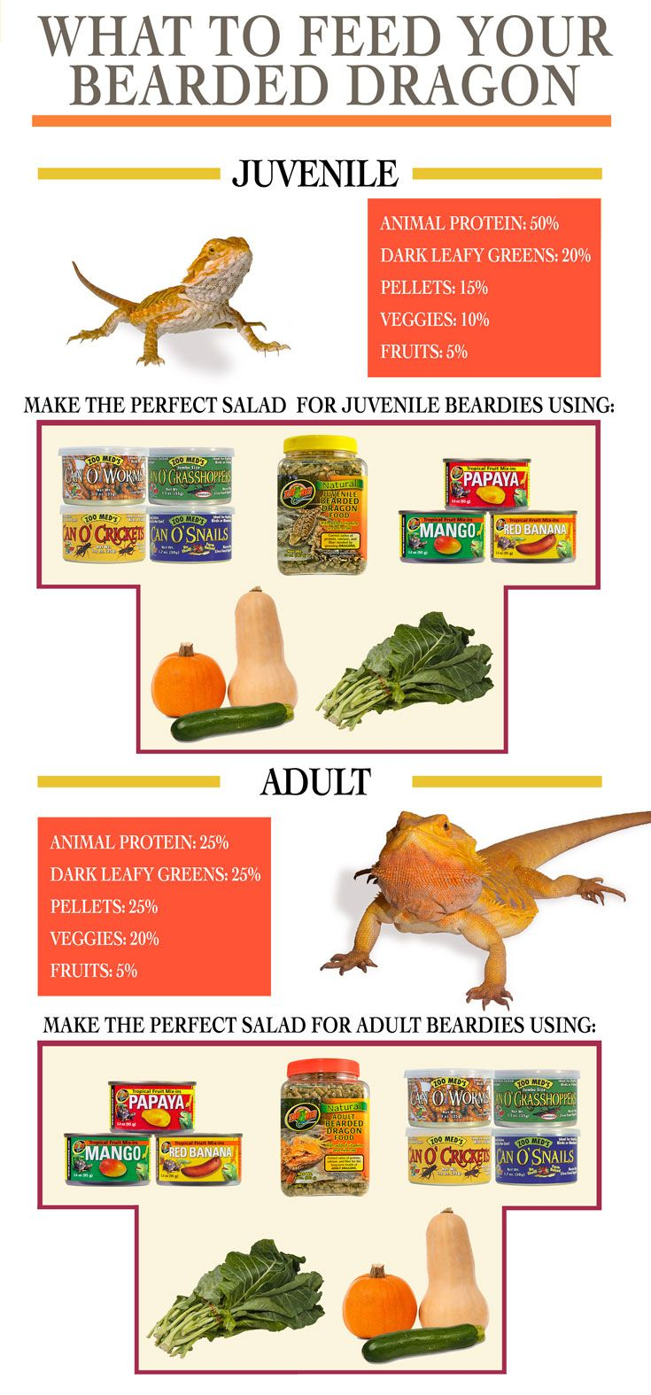 Proper Bearded Dragon Diet at different life stages. Blend a delicious medley of ingredients into a salad that meets all of your beardies needs. Combine dark leafy greens (such as collard), vegetables (such as butternut squash/pumpkin), pellets, Can O' Insects cooked in the can for maximum freshness, and Tropical fruit mix-ins. Don't forget to add Repti Calcium/ReptiVite to keep your pet healthy!