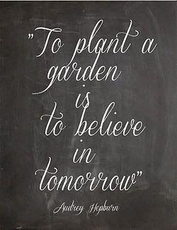 'To plant a garden is to believe in tomorrow' - Audrey Hepburn #Quotation #Garden