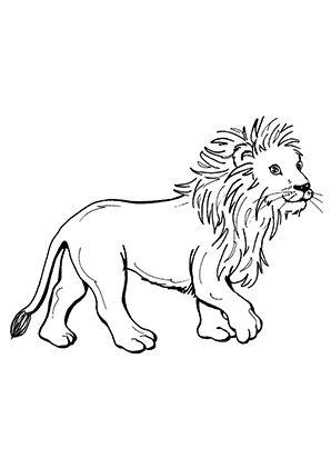 ausmalbild löwe 6 zum kostenlosen ausdrucken und ausmalen