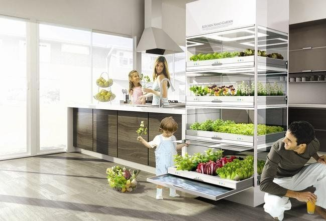 kitchen-nano-garden3
