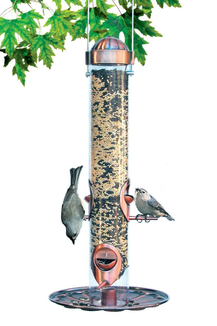 385YH Festival 2 in 1 Copper Feeder. Changes mixed seed to nyjer. 1.8 lb. capacity. Hung or pole mounted. 4 perches. Copper perches, tray and top. Clear plastic tube.
