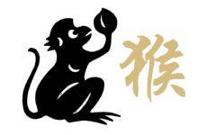 Signe chinois Singe   signe-chinois.com