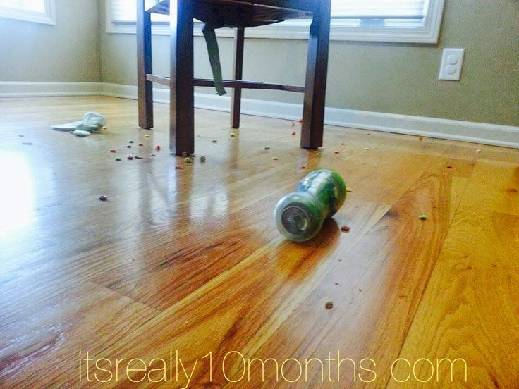 A little parenting humor and why we can't have nice things. Photos that any mom or dad can relate to!
