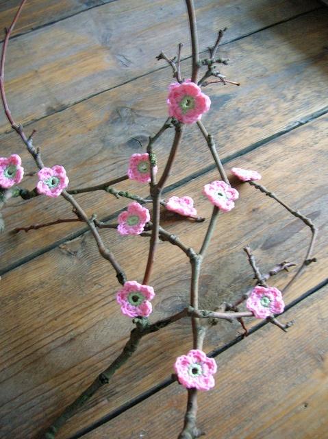 blossom | Flickr - Photo Sharing!