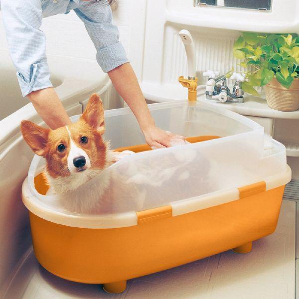 Best 20+ Dog Bath Tub Ideas On Pinterest